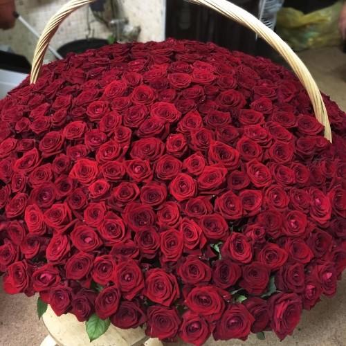 Купить на заказ Заказать 1001 роза с доставкой по Петропавловску  с доставкой в Петропавловске