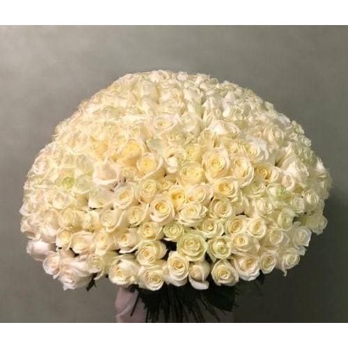 Купить на заказ Заказать 201 роза с доставкой по Петропавловску  с доставкой в Петропавловске