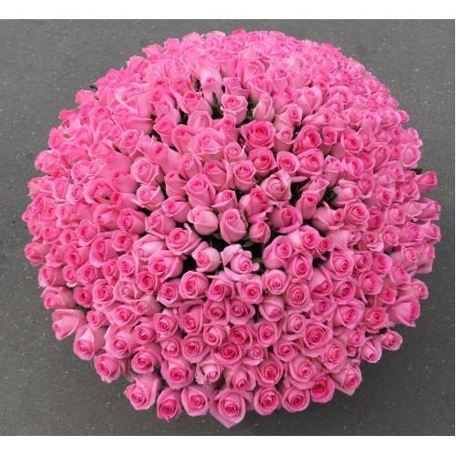 Купить на заказ Заказать 501  роза с доставкой по Петропавловску  с доставкой в Петропавловске