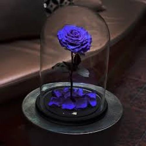 Купить на заказ Заказать Роза в колбе   фиолетовая с доставкой по Петропавловску  с доставкой в Петропавловске